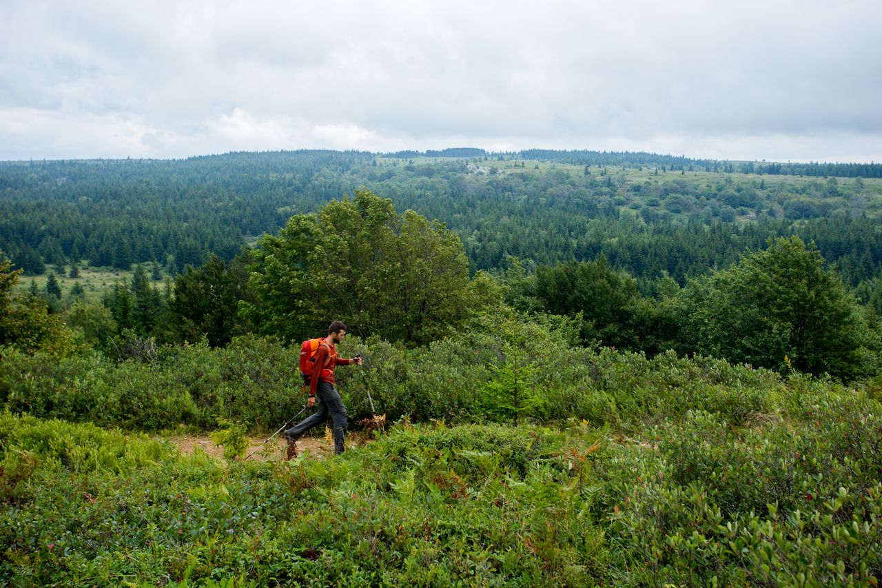 What do to this summer in the Appalachian Moutains