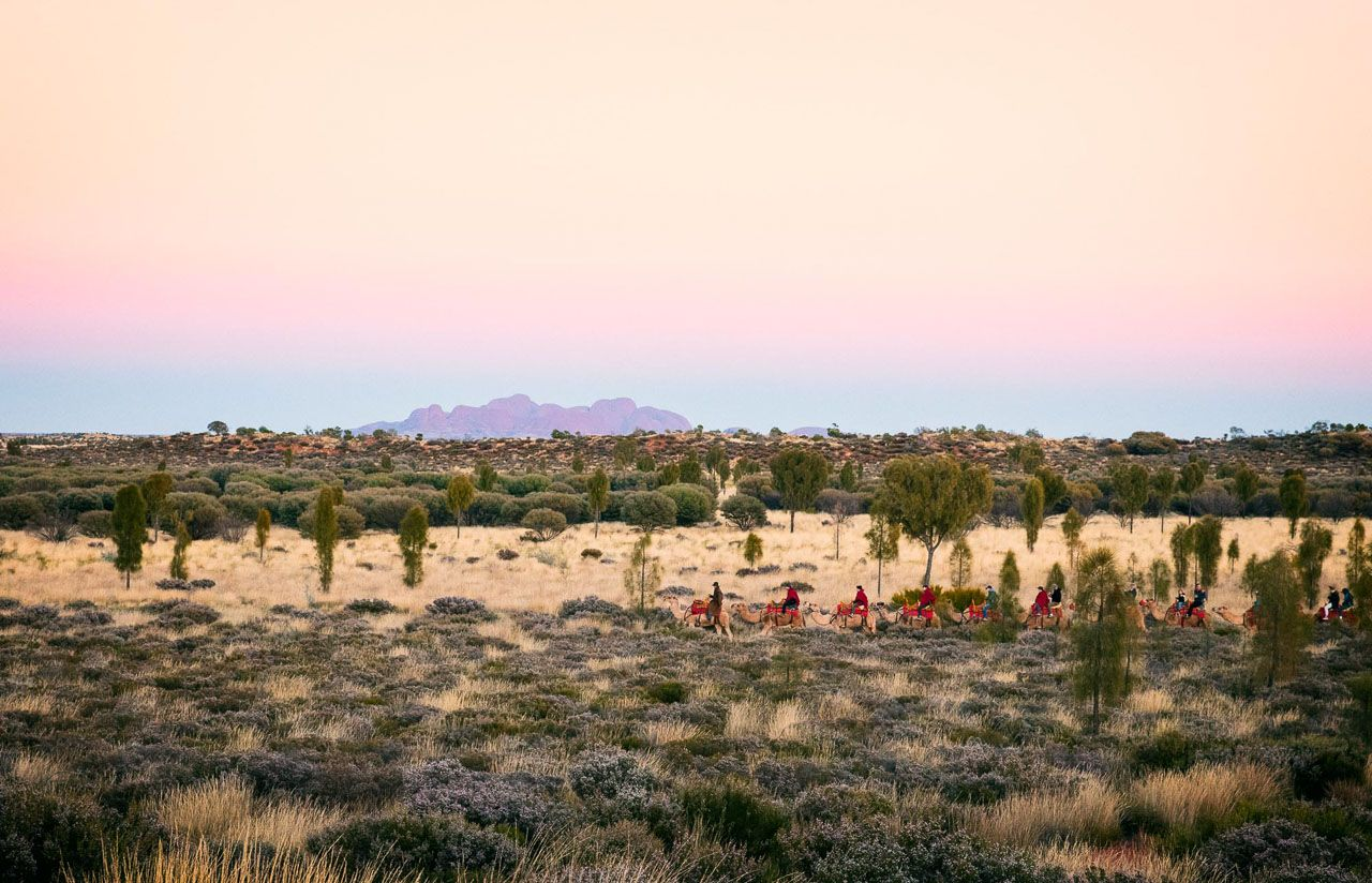 sunrise to sunset in the northern territory u0027s red center matador