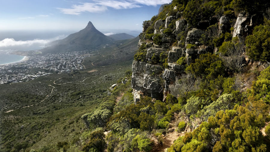 5 amazing trails for summiting Table Mountain