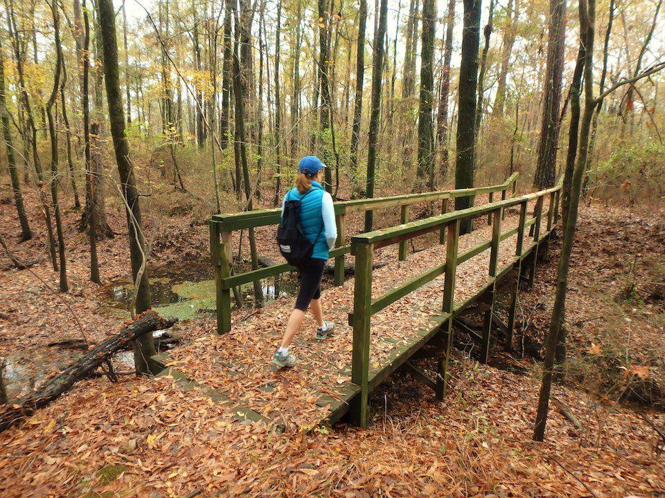 Conagree National Park South Carolina