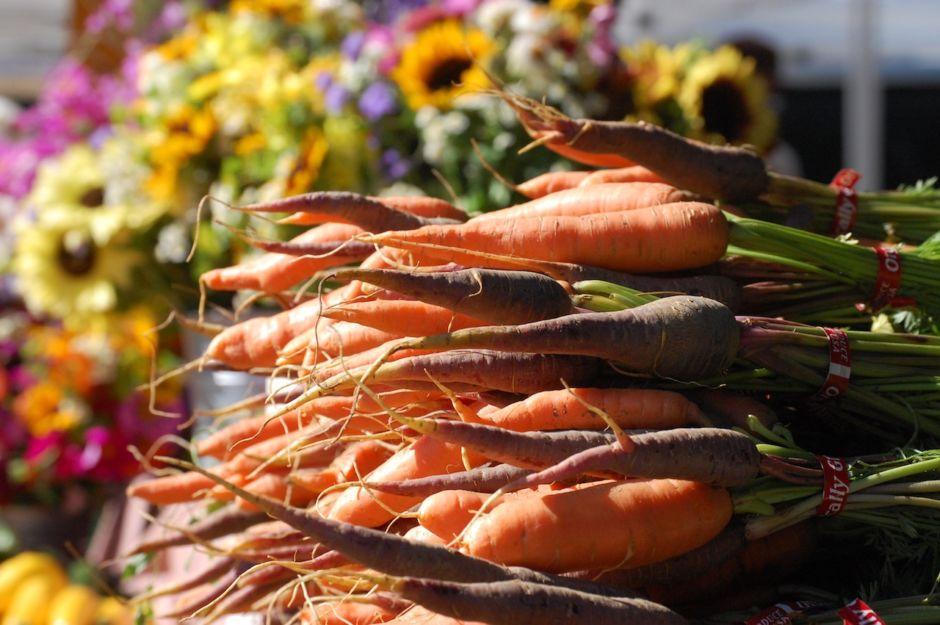 Longmont Colorado Farmers market