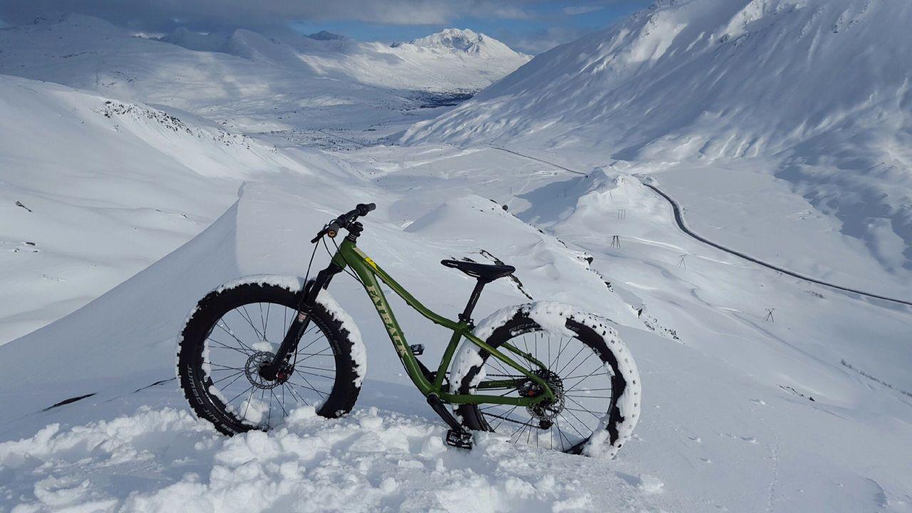 Fat biking Valdez, AK