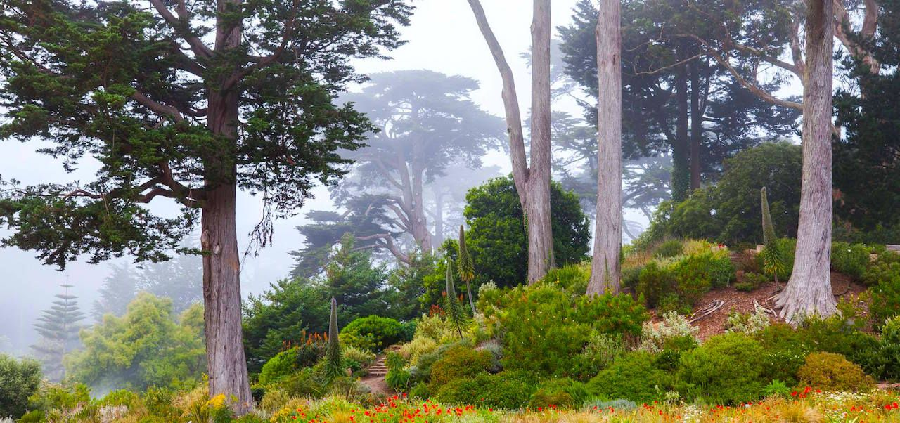 9 nature spots you need to check out in San Francisco