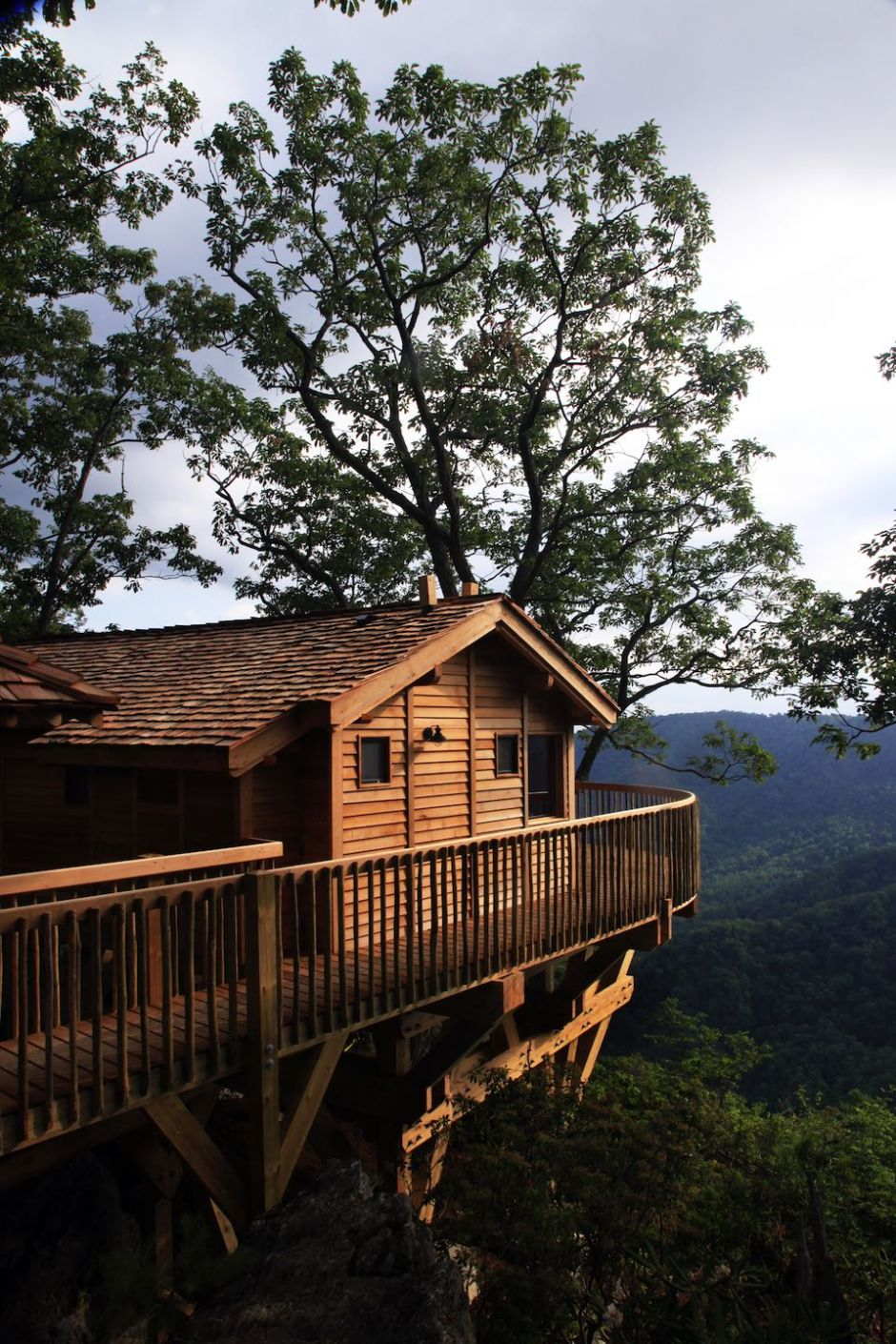 Virginia Primland's tree house
