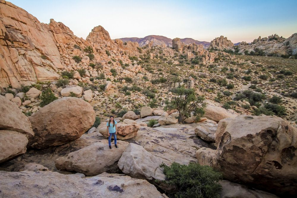 Planning a trip to Joshua Tree National Park