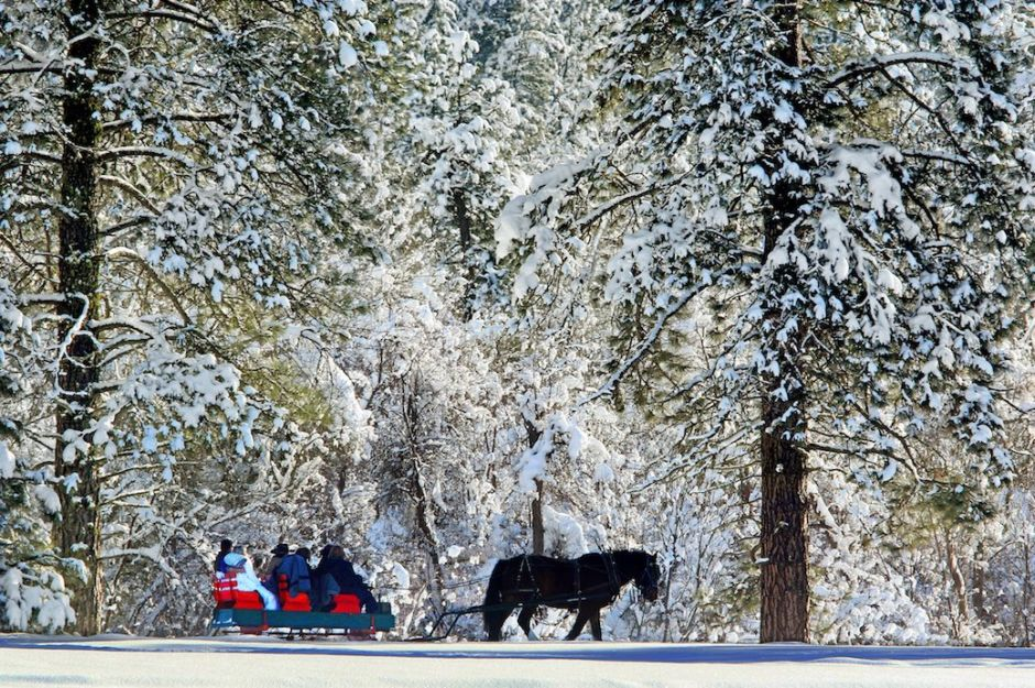Sleigh ride Leavenworth winter Brian Munoz