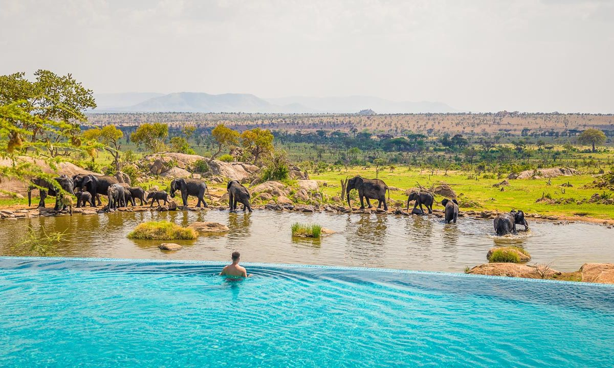 5 once-in-a-lifetime experiences in the Serengeti