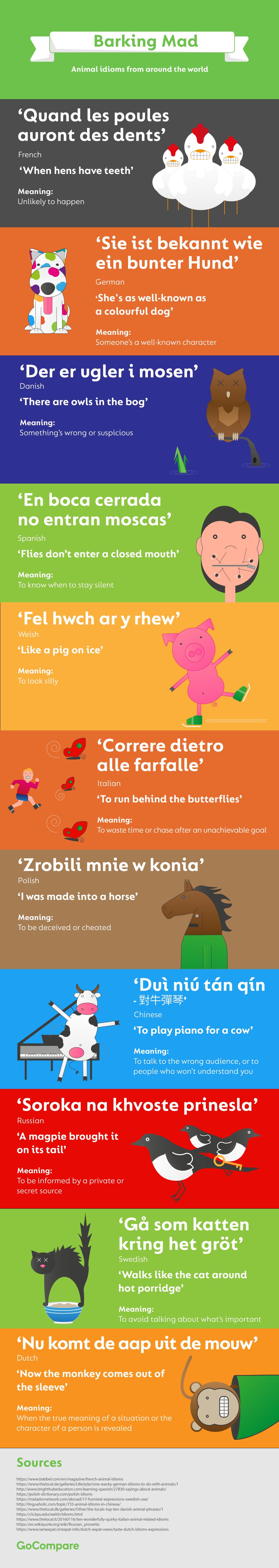 infographic animal idioms