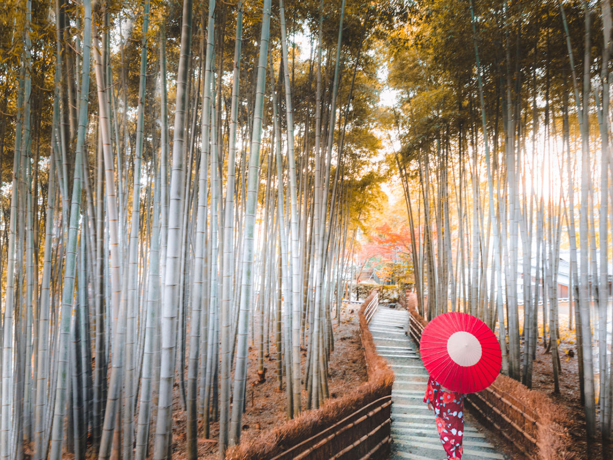 9 amazing images of Japan's traditional facet