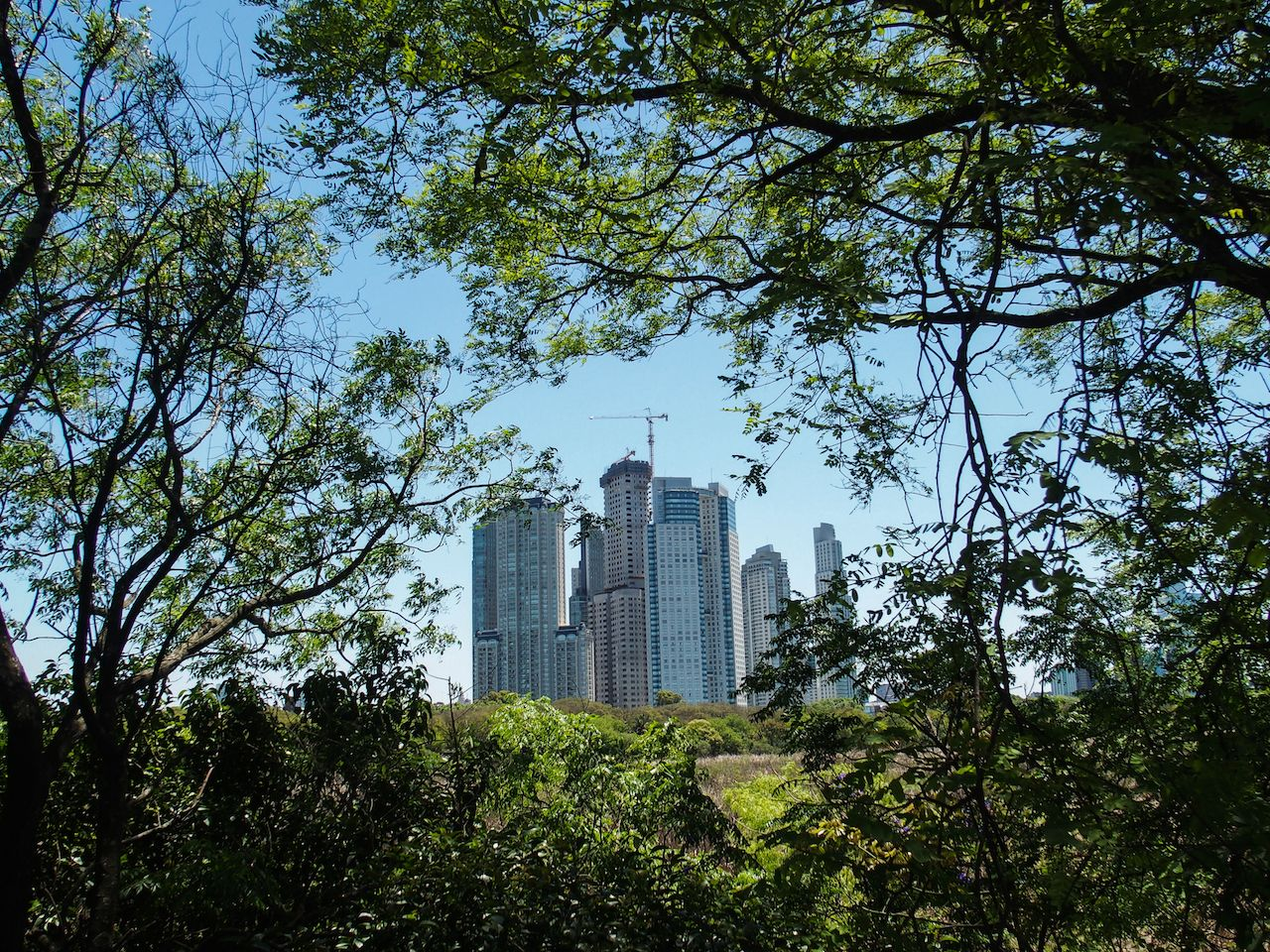 Buenos Aires eco-reserve
