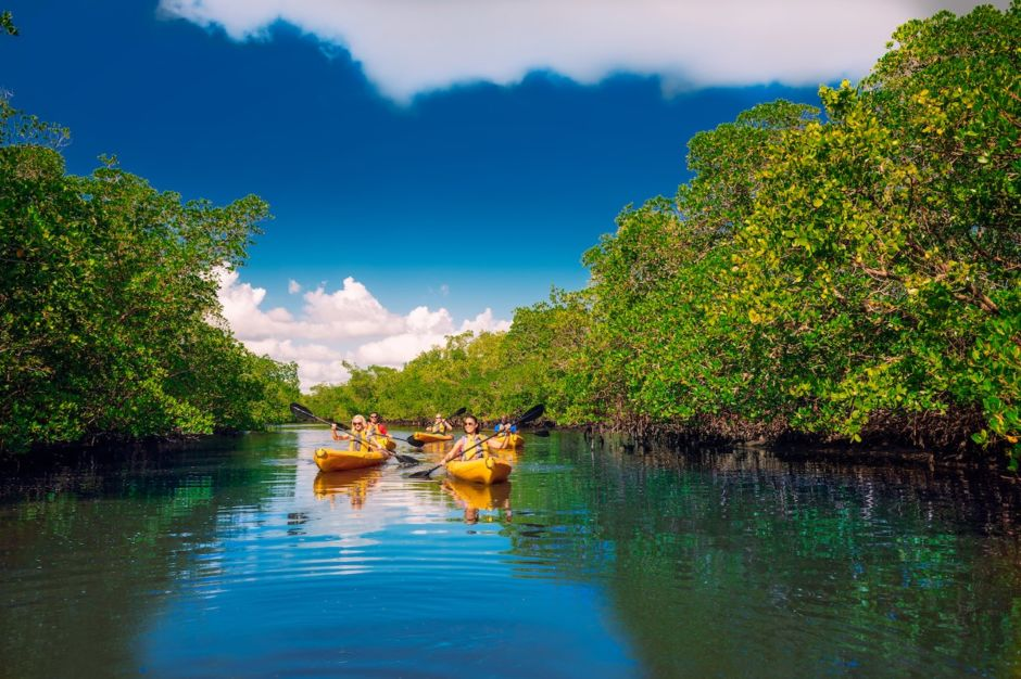 Kayaking Calusa Blueway Fort Myers Sanibel Florida