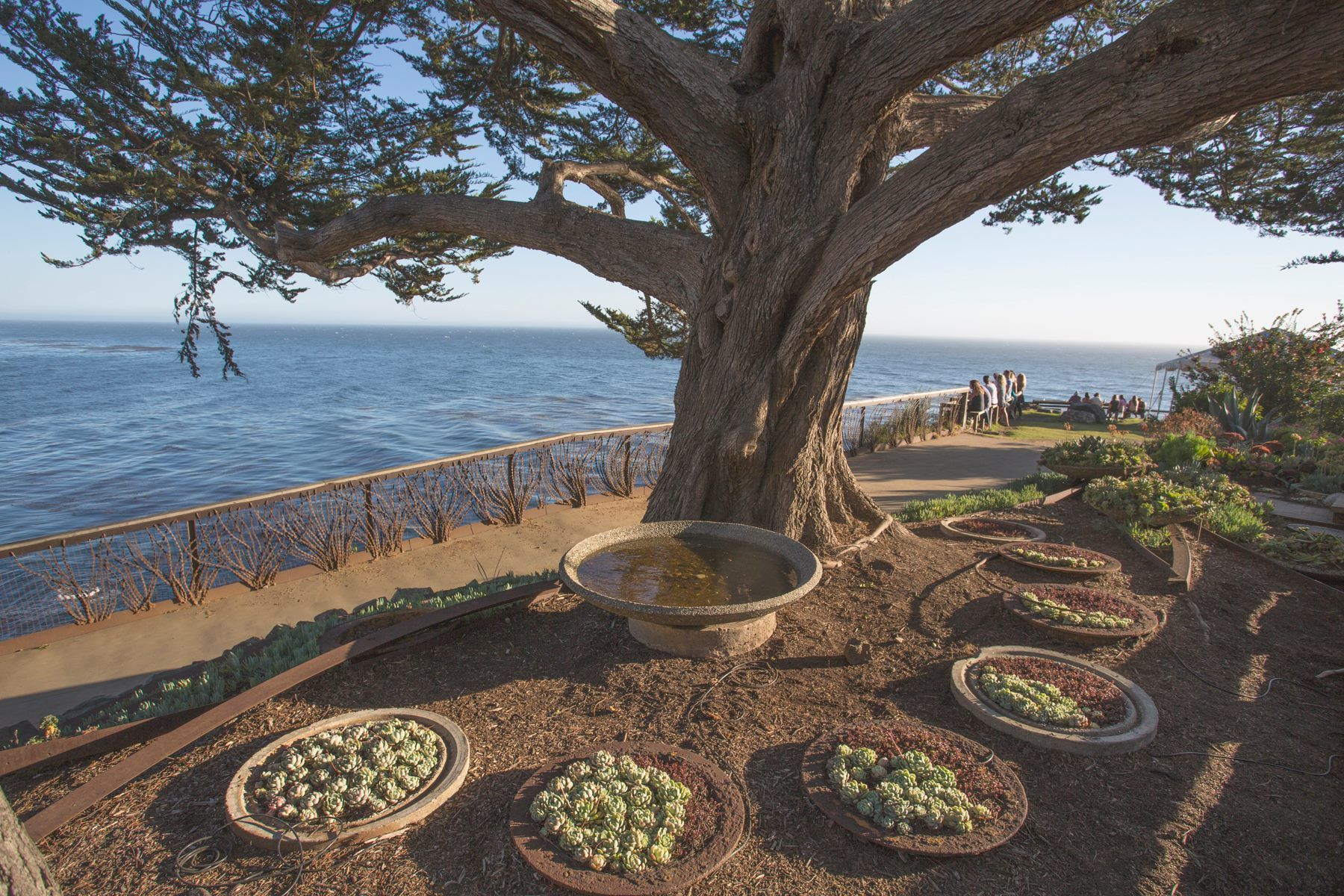 Esalen retreat