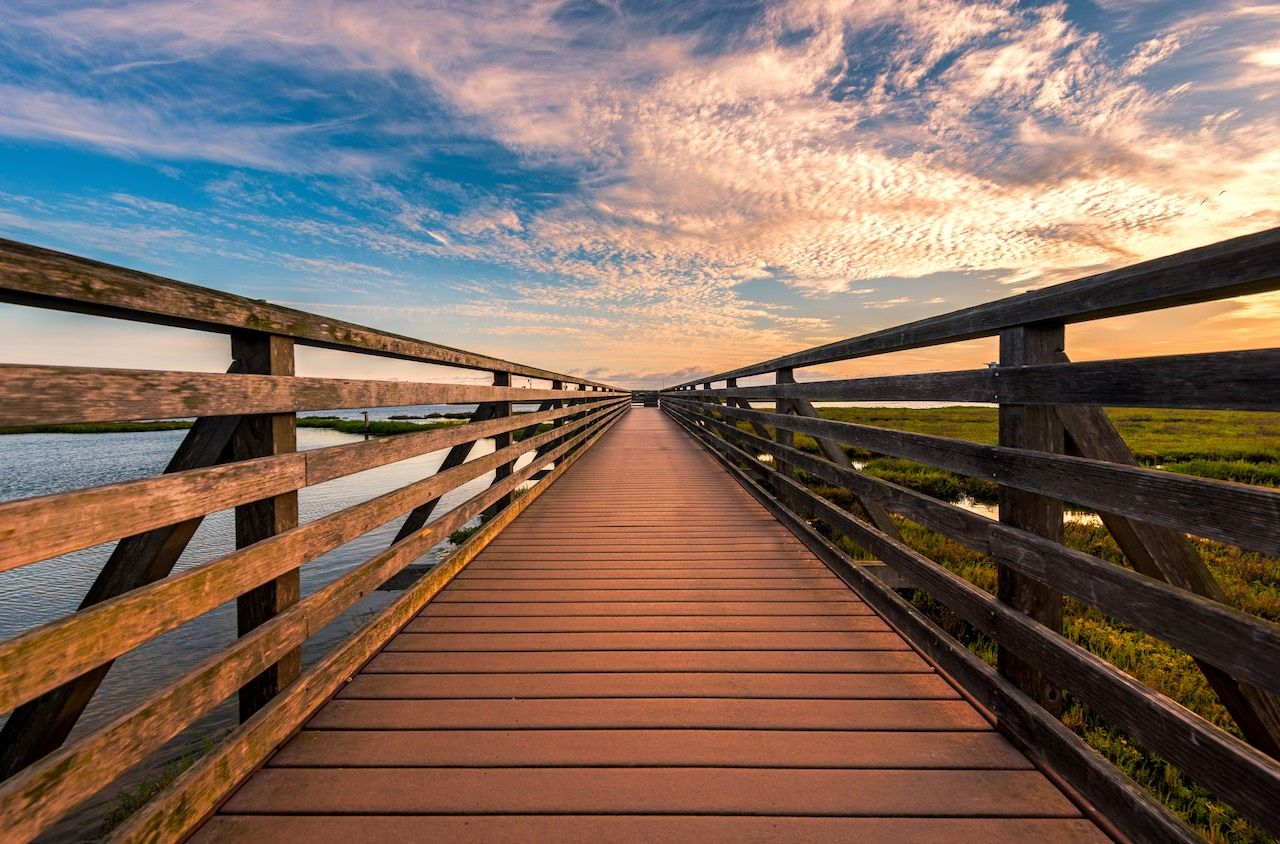 Bolsa Chica wetlands Huntington Beach California