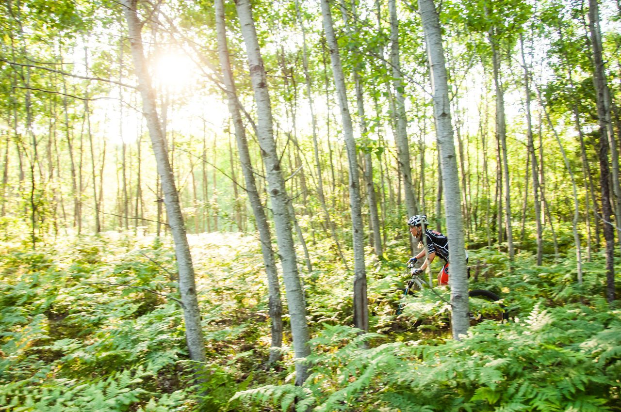 Traverse City mountain biking