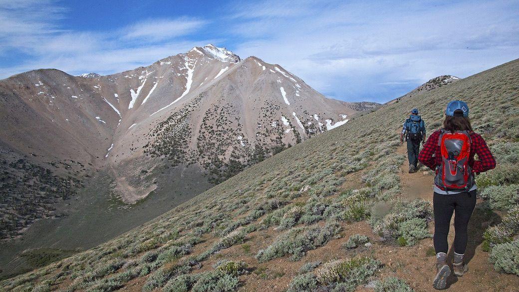 Boundary Peak hiking Nevada mountains