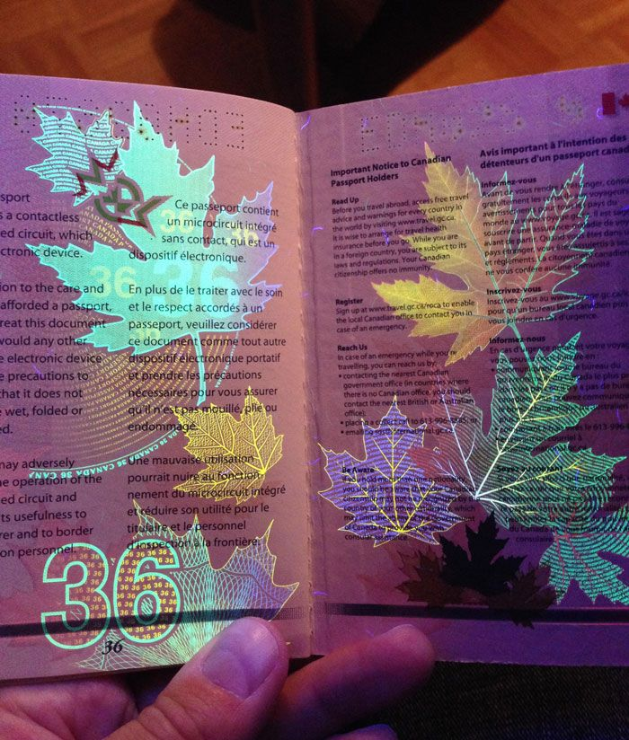 Canadian passport with UV light