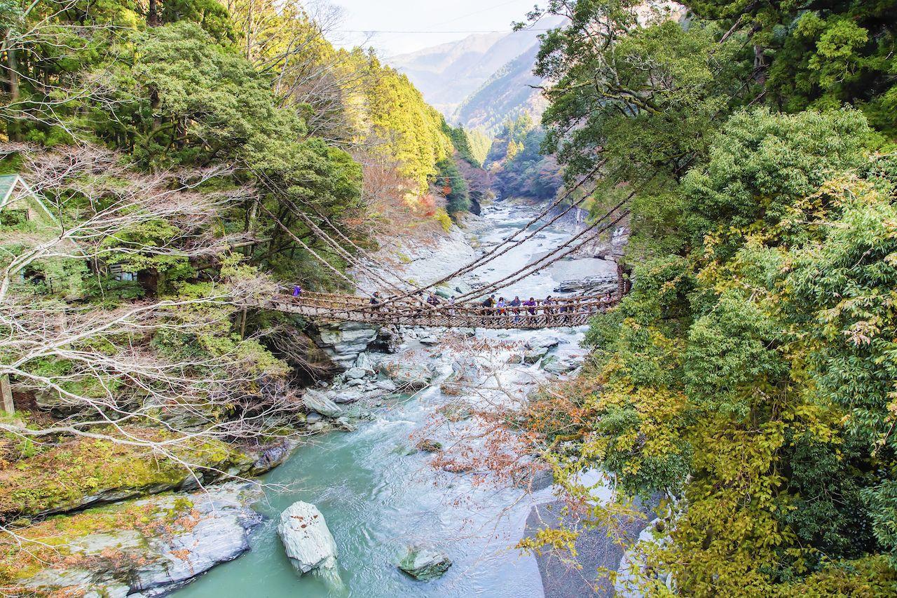 Suspension bridge in Japan
