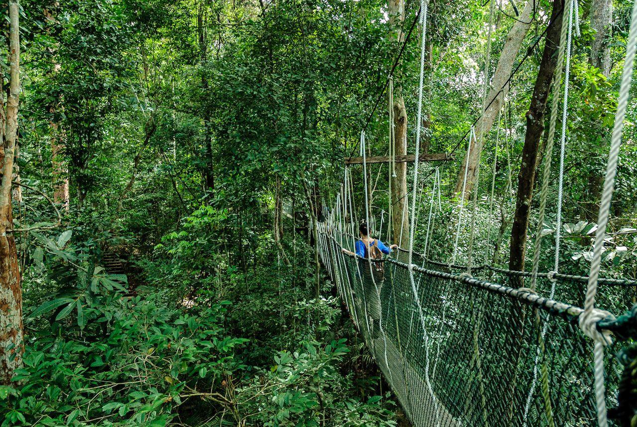 Bridge in Malaysia