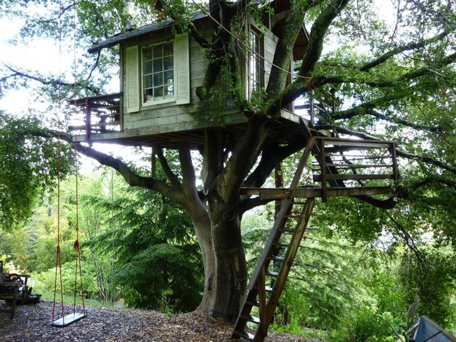 San Francisco treehouse