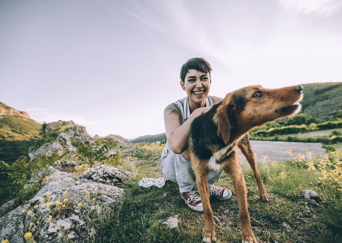 The 7 best places in the world for dog lovers