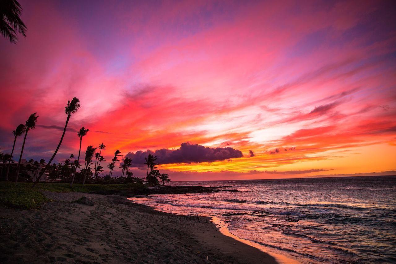 Mauna Lani Sea Adventures