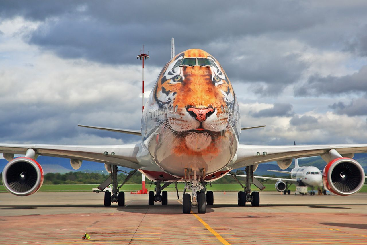 The best airplane liveries in the world and their meanings