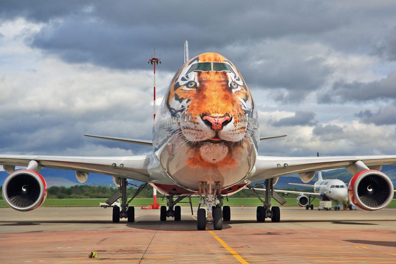 Rossiya airplane livery