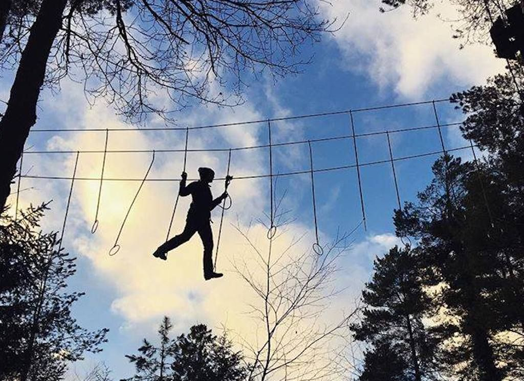 Tree top courses in Sussex