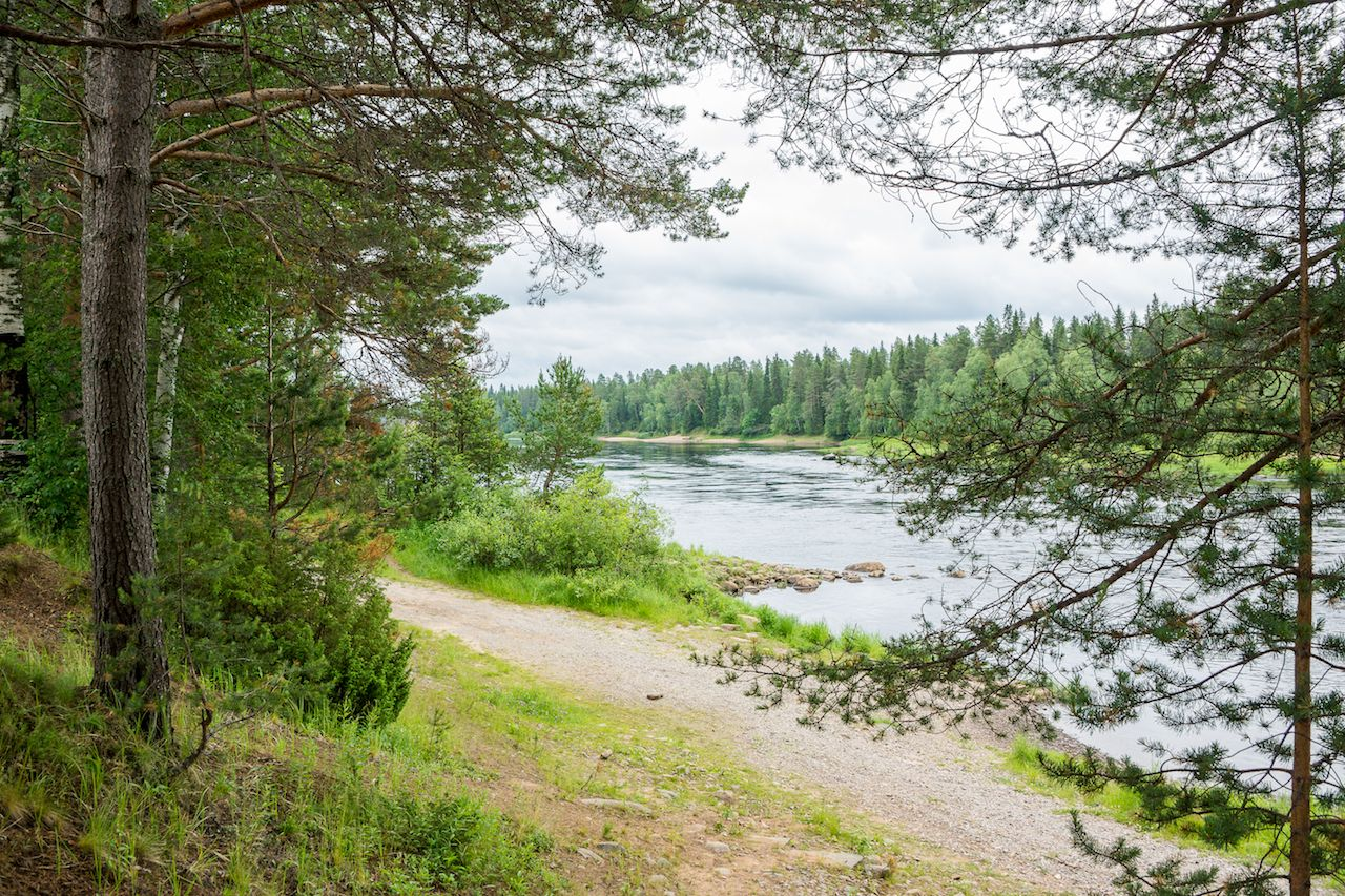 Woods and river in Rovaniemi Finland