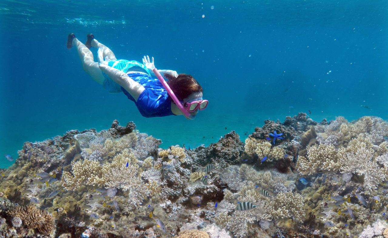 Best Off Beach Snorkeling Fiji