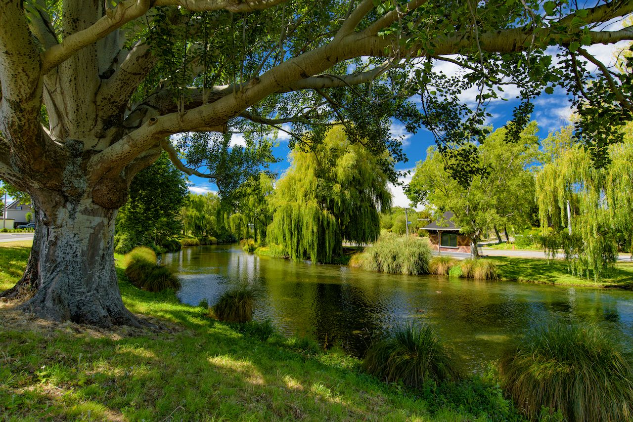 Avon River in Christchurch, New Zealand