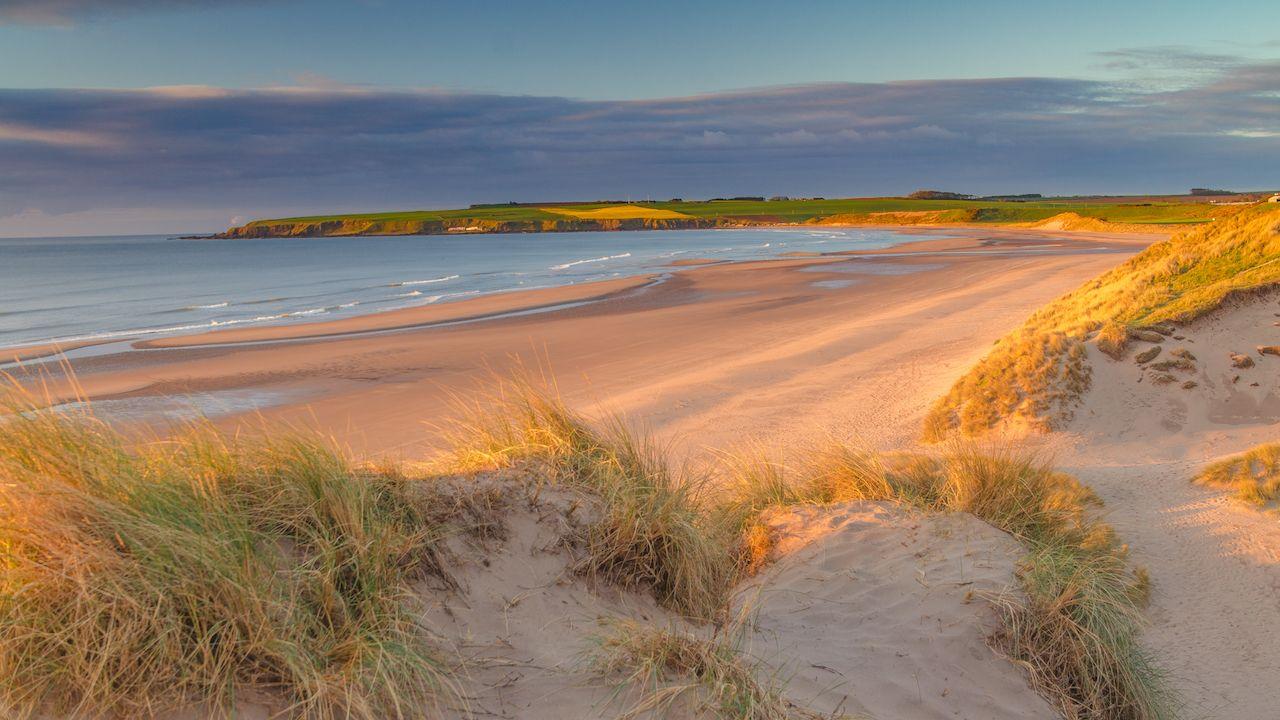 Lunanbay Beach, Angus, Scotland