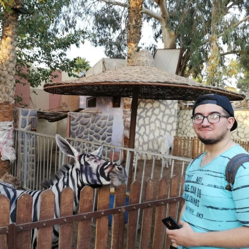 Mahmoud Sarhan with a donkey painted to look like a zebra
