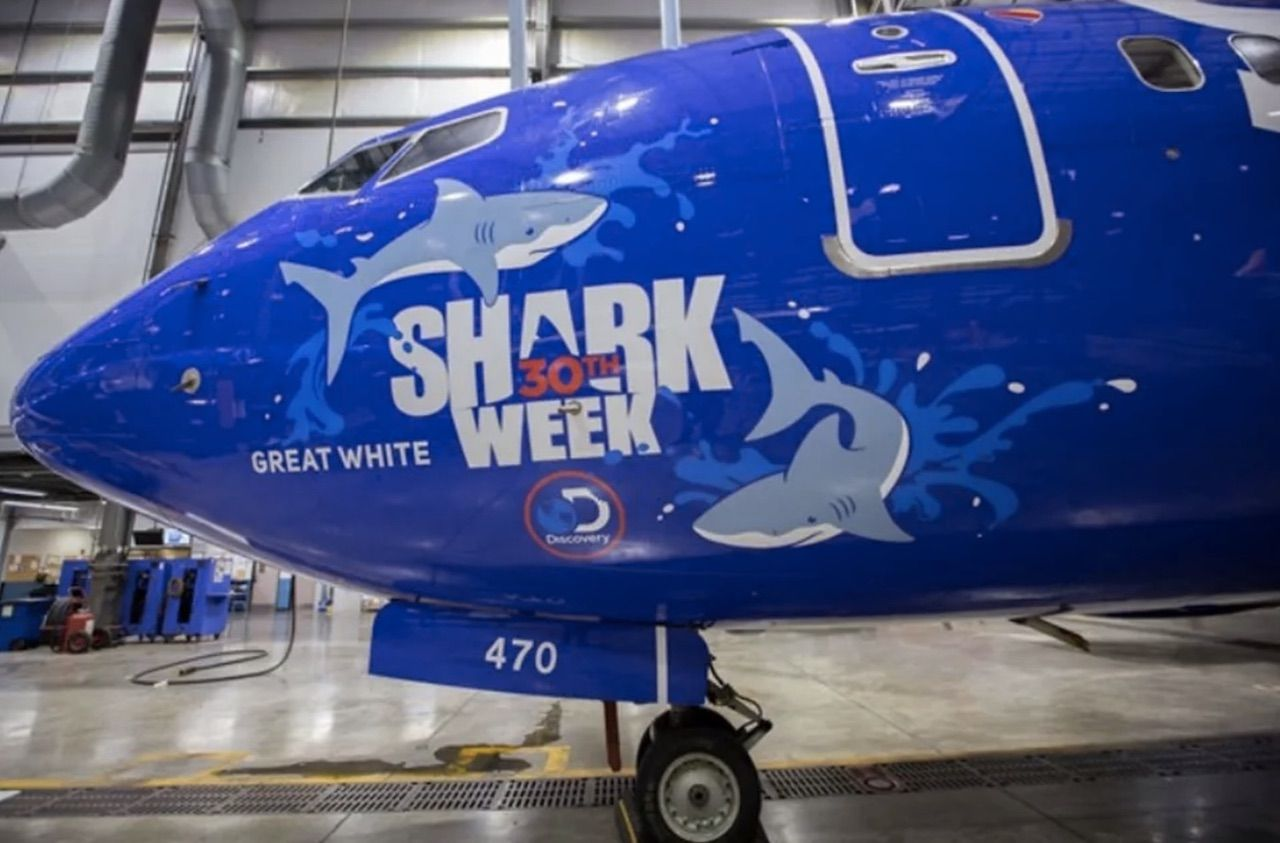Southwest designs shark-themed plane