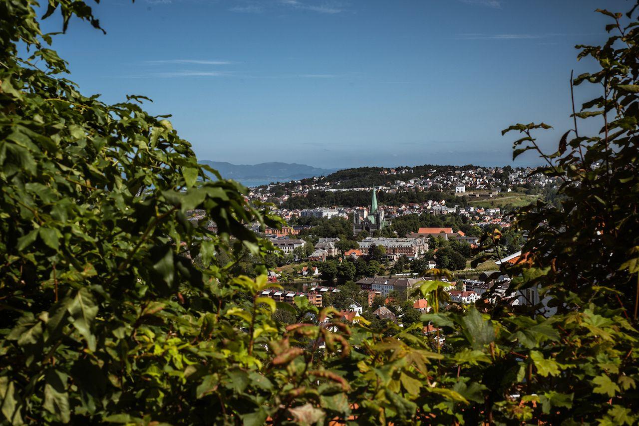 St Olavs Way city view through greenery