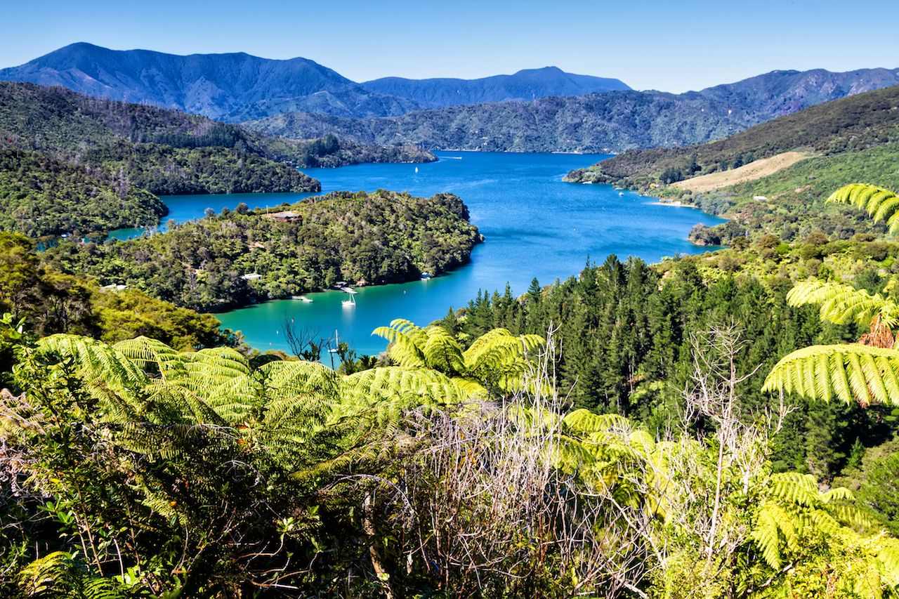 View of bays in Queen Charlotte Sound, Picton, Marlborough region, South Island, New Zealand