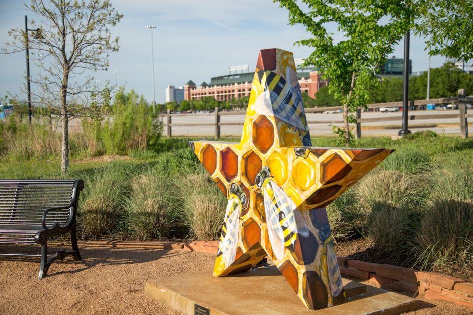 Arlington Texas star bee active