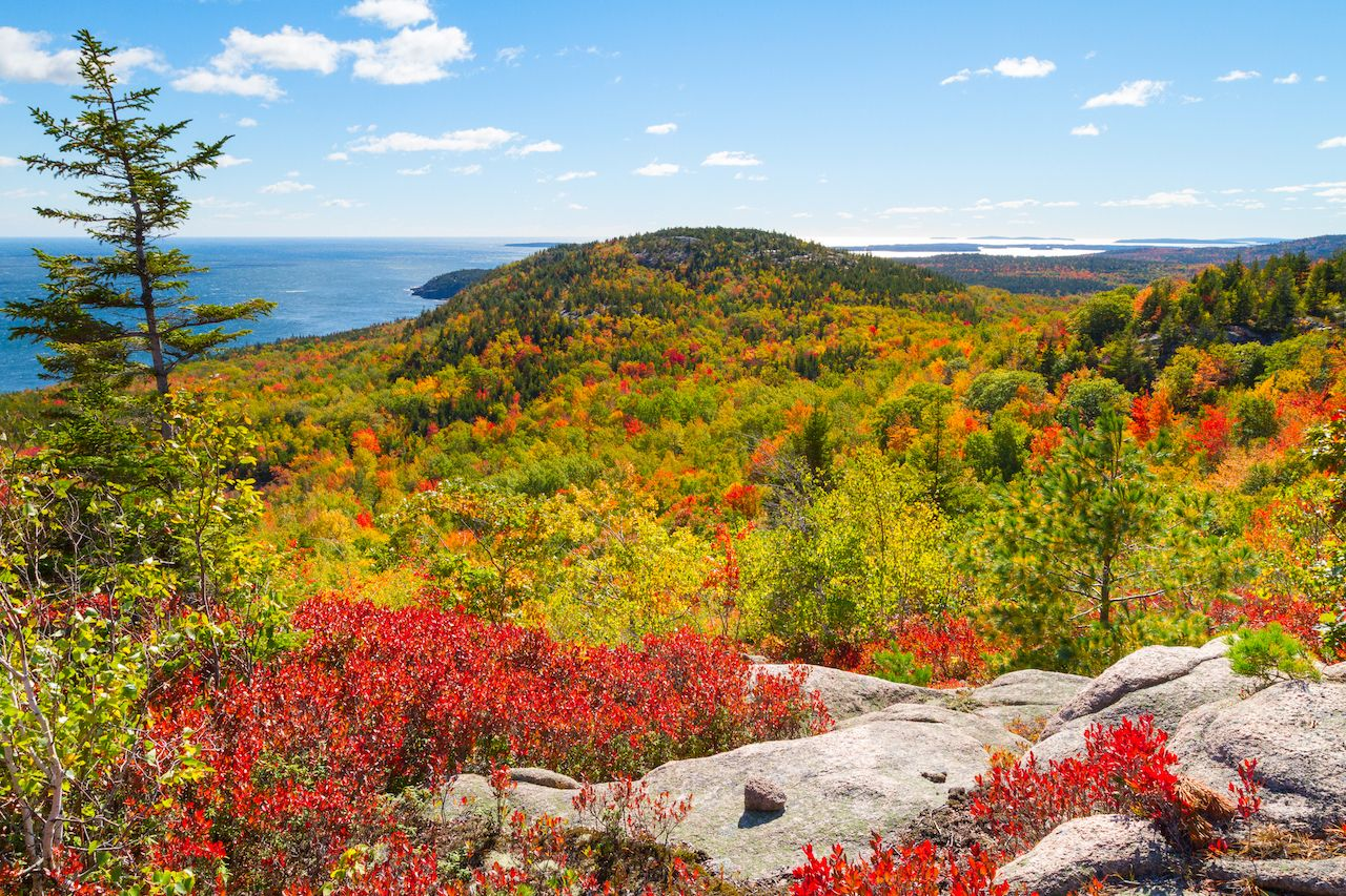 Autumn Foliage in Acadia National Park, Maine, USA