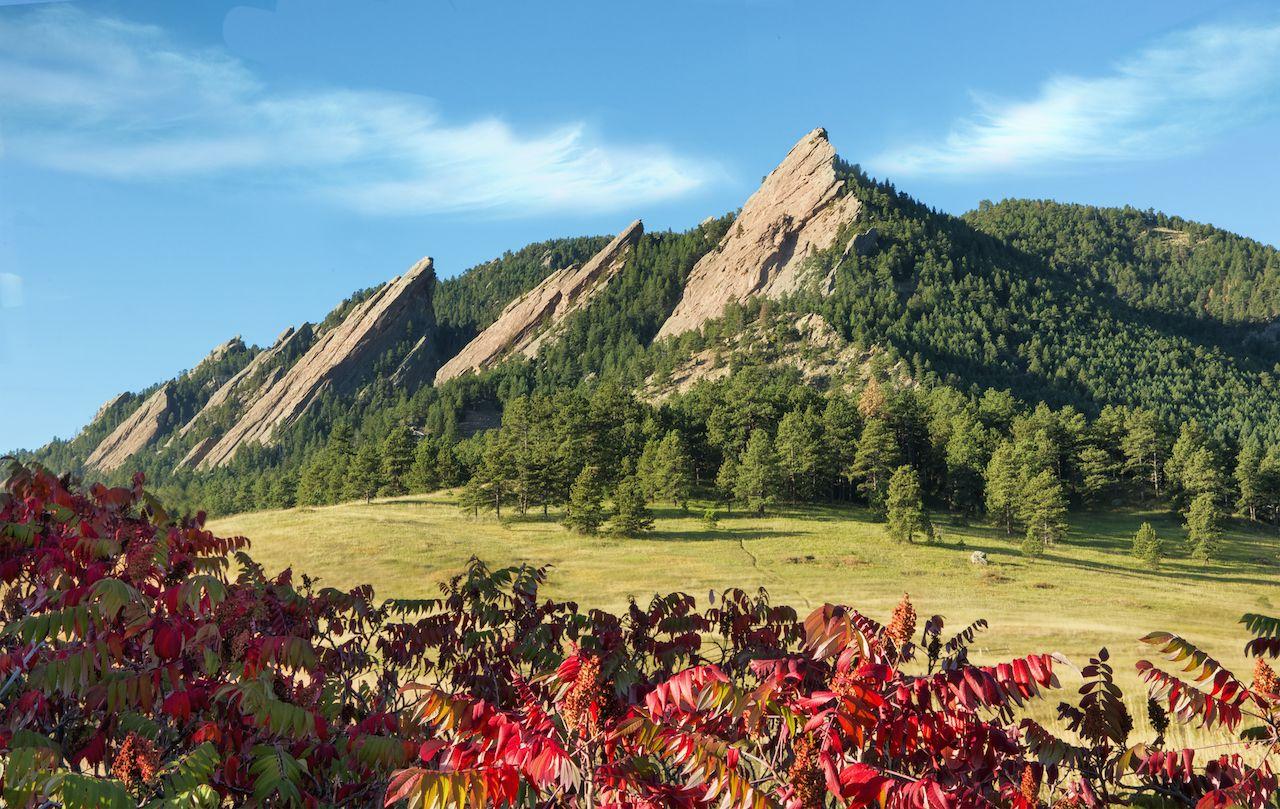 Boulder Flatirons with red sumac foliage
