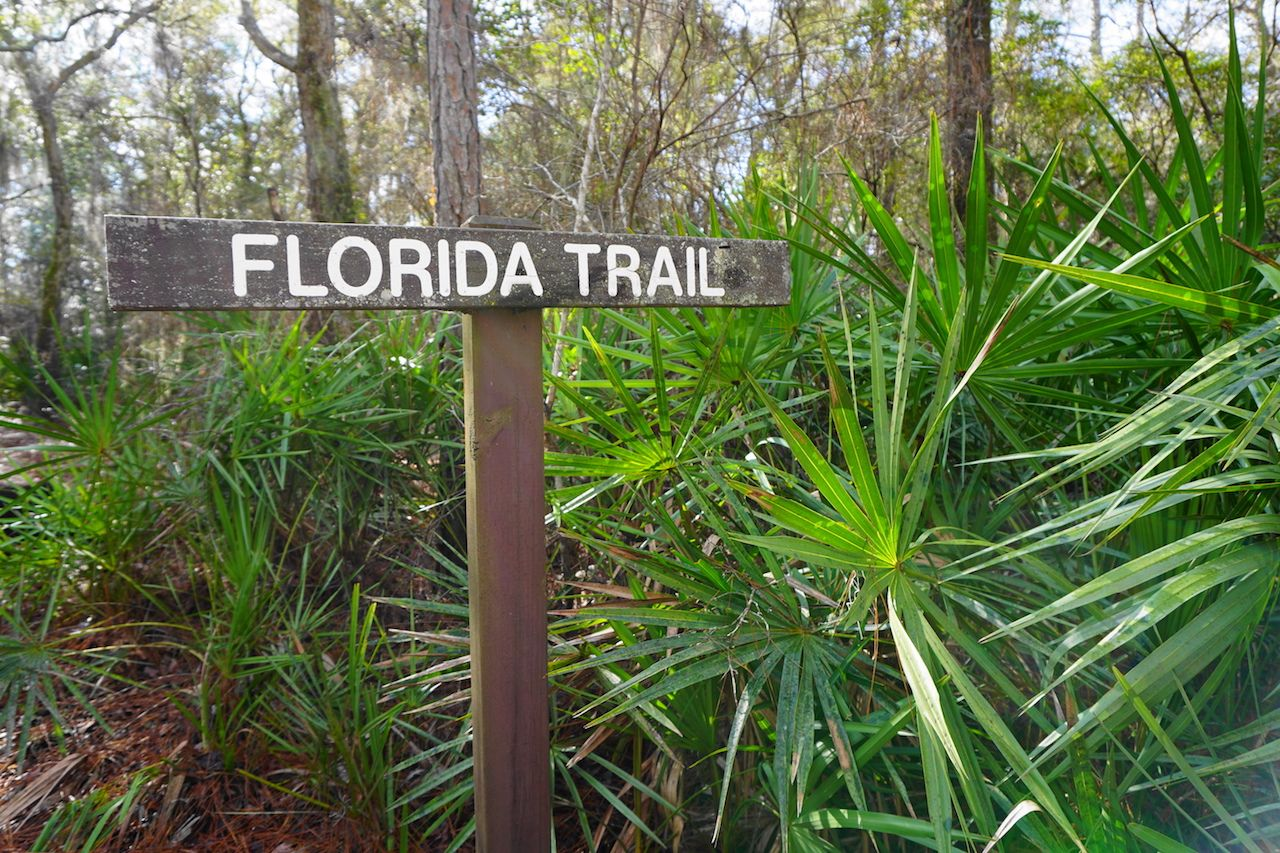 Florida Trail sign in the Suwannee River section of the Florida National Scenic Trail