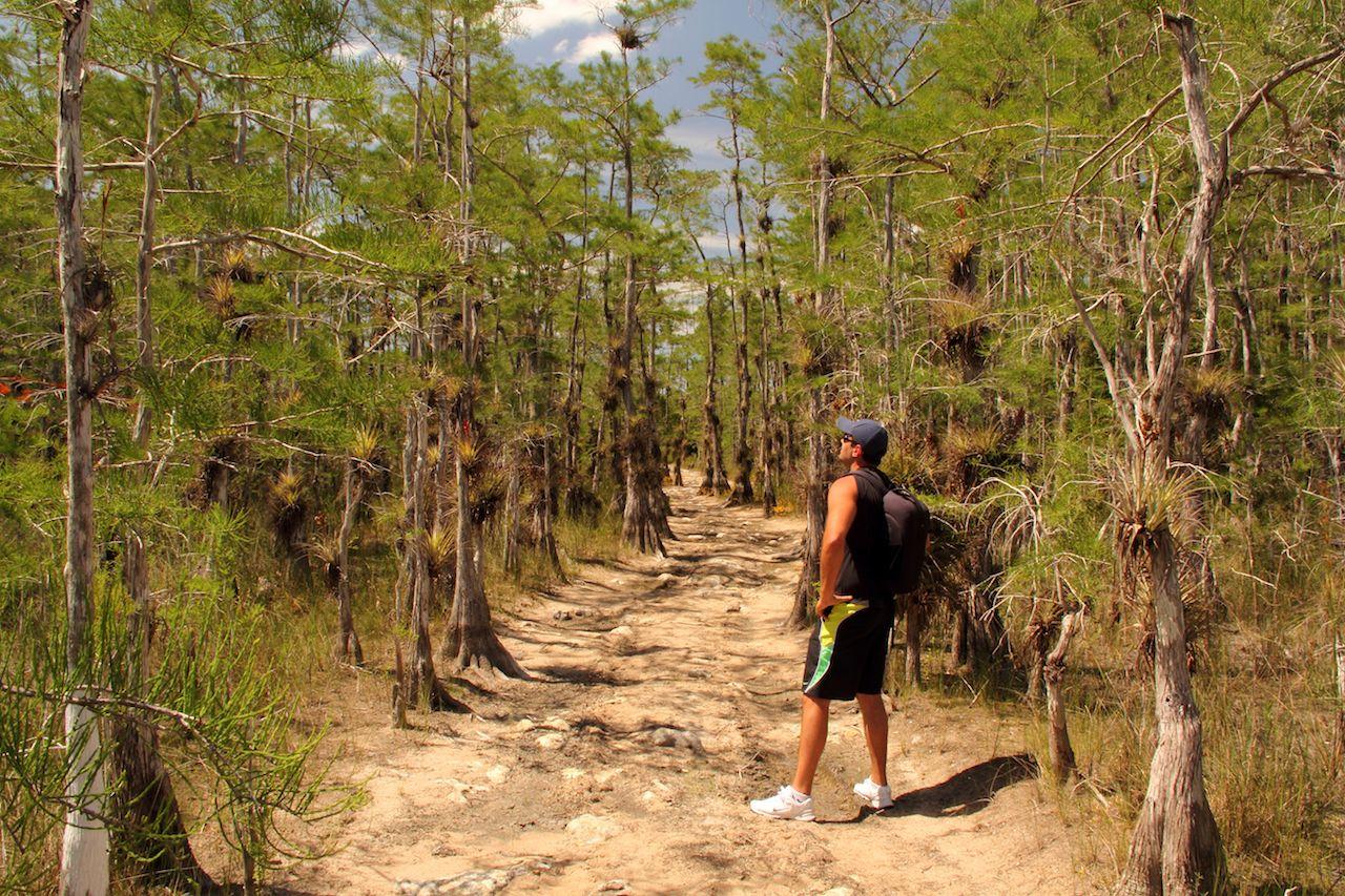 Hiker in Big Cypress National Preserve, FL
