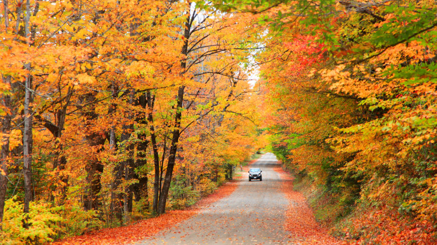 The most scenic drives for fall colors in New England