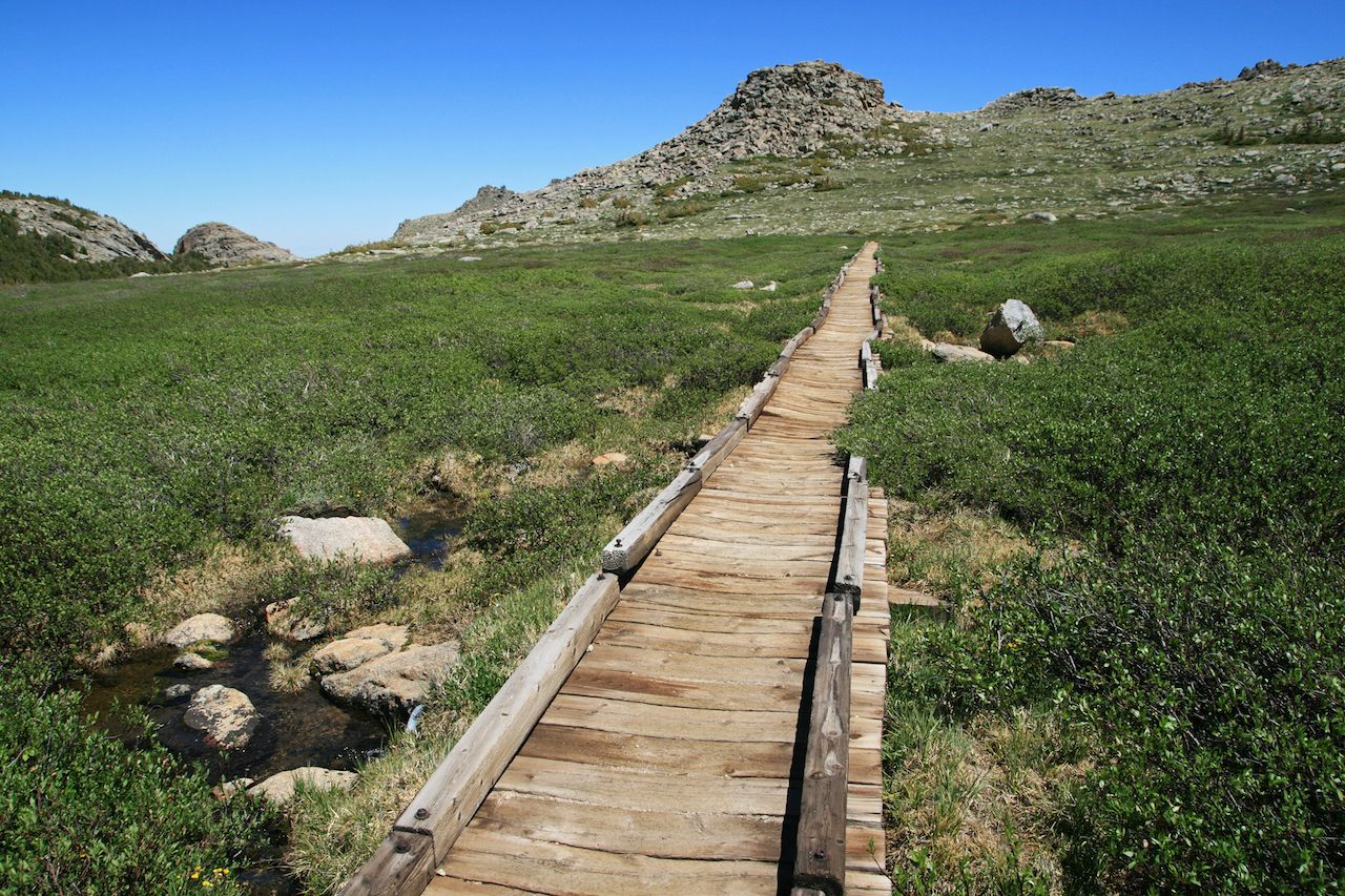 old wooden raised trail on the bears ears trail in the Wind River Range, Wyoming
