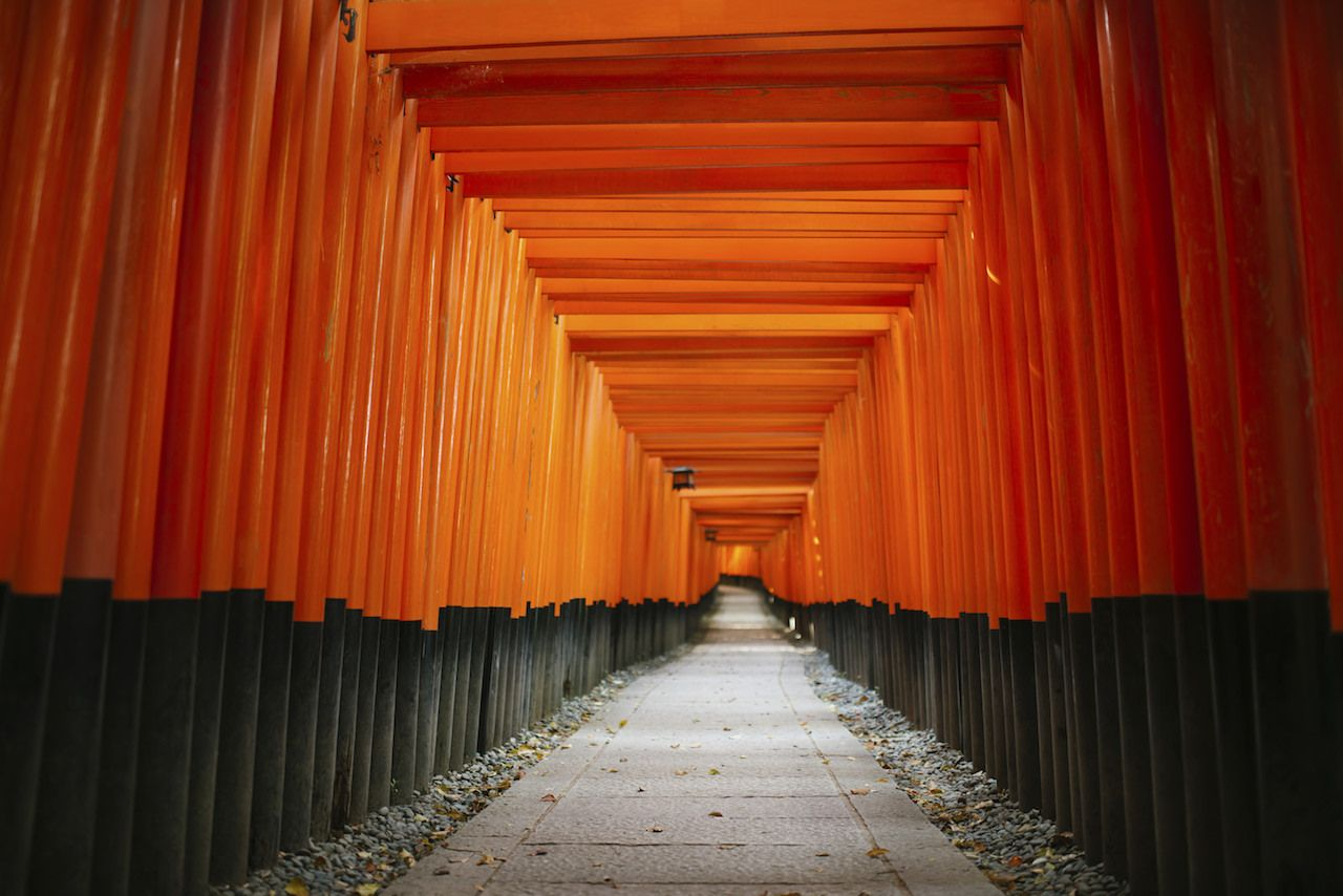 Red torii gates in Japan