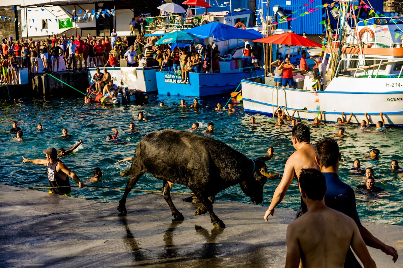 Bull charging by the water in Azores festival