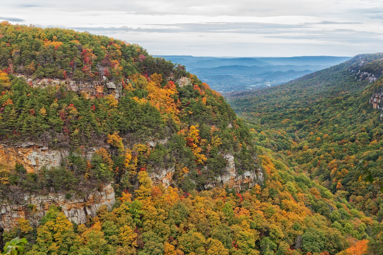 Cloudland Canyon State Park Overlook View During Autumn in Georgia