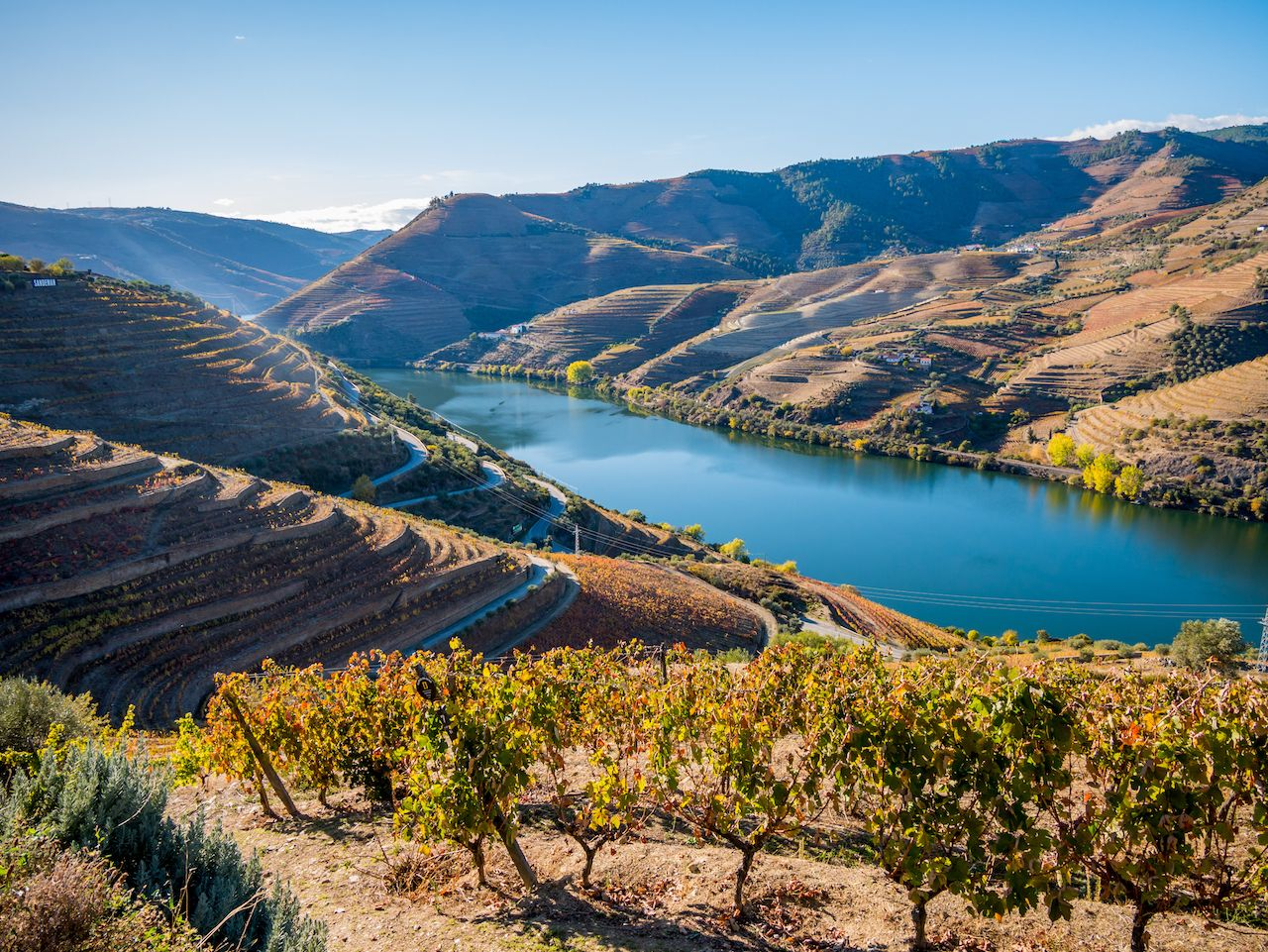 Douro river and vineyards in Portugal