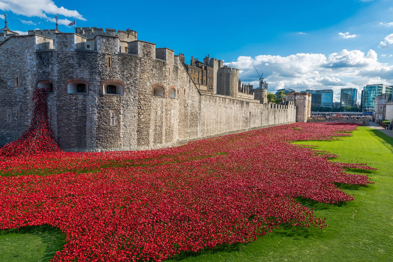 Poppies display at London museums