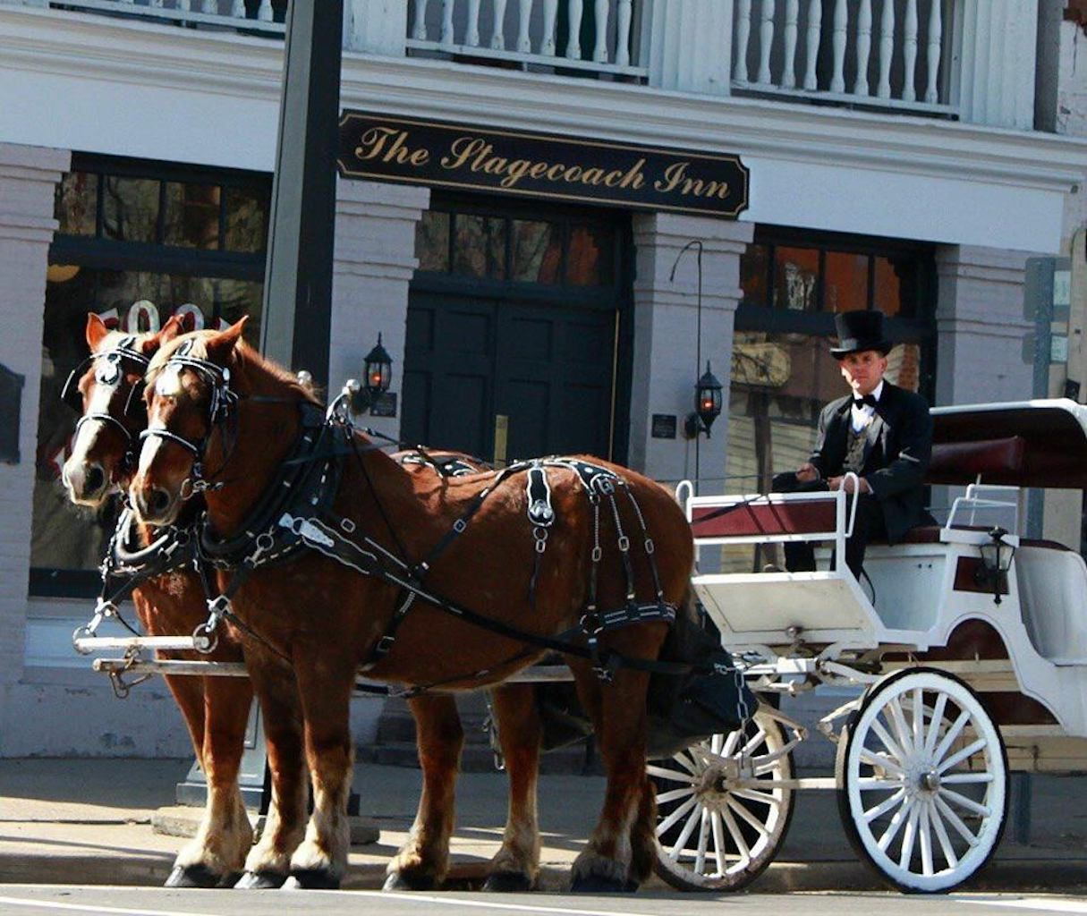 Horse-drawn hearse with Marshall Carriage Co. and Ghost Tours