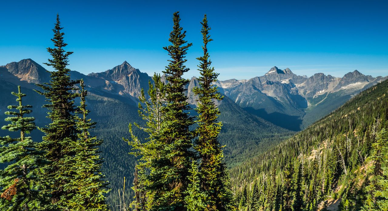 North Cascades from the PCT
